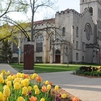 Spring Online Open House