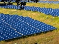 Implications of Large Solar Installations and Leasing on Farmland