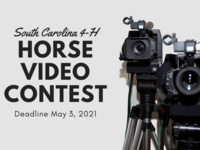 SC 4-H Horse Project Video Contest