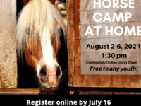 Horse Camp at Home