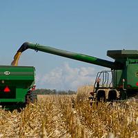 Grain Marketing Outlook and Strategies - Virtual