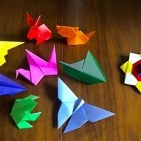 Gray Fund Presents: Origami Class with Taro's Origami Studio