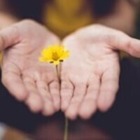 Mindfulness Meditation for Challenging Times