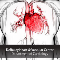 DeBakey Heart & Vascular Center