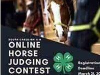 SC 4-H Horse Judging