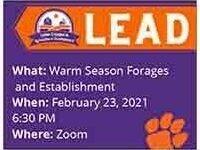 LEAD Warm Season Forages and Establishment