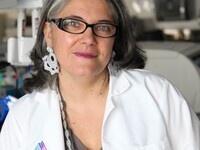 Seminars in Infection & Immunity: Dr. Ana Fernandez-Sesma