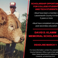 David D. Klamm Memorial Scholarship Application DUE