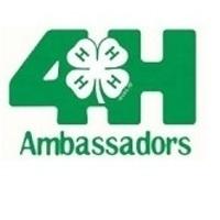 4-H Ambassador Training II