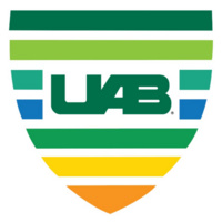 UAB Shared Values in Action Program (UAB VIP Award)