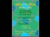 Alpha Chi Sigma Beaker Sale