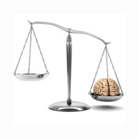 Brainy Days: Brains on Trial: What Brain Science Tells Us About the Origins and Limits of Responsibility