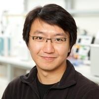 Molecular and Computational Biology Seminar - Dr. Frank Chan (Max Planck Campus Tübingen, Germany)
