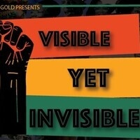 Visible, Yet Invisible