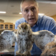 Tim with a specimen of an Eastern Screech Owl