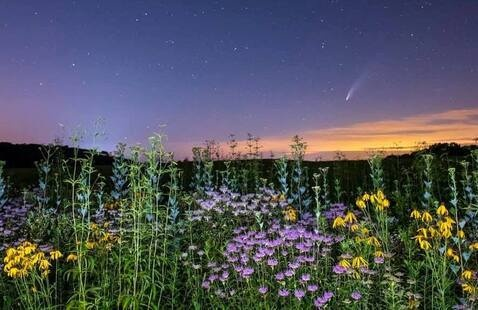 Comet Neowise over the prairie at Prophetstown State Park, photo by Frank Oliver