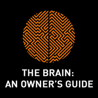 Portrait of a Brain: A Window into the Architecture of Our Mind  - The Brain: An Owner's Guide 2021 BrainHealth Lecture