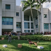Graduate School Virtual Takeover: Criminal Justice