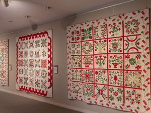 Wild and Untamed: Dunton's Discovery of the Baltimore Album Quilts