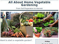All About Home Vegetable Gardening
