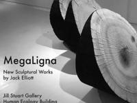 Megaligna