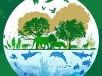 Wildlife Conservation Team Meeting