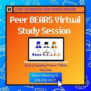Peer B.E.A.R.S Virtual Study Sessions