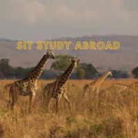 Study Away Fair: SIT Programs - Australia, Ecuador, Jordan, Morocco, Netherlands, Tanzania, Tunisia
