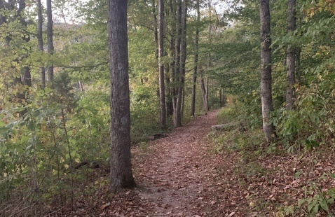 Spring Equinox Hike, Spring Mill State Park