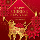 Chinese Lunar New Year Celebration & Spring Lantern Festival