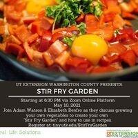 Garden to Table Series: Stir Fry Garden