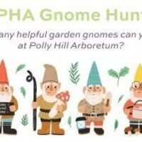 Self-Guided Gnome Hunt