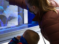 mom and her son looking at a tank of corals