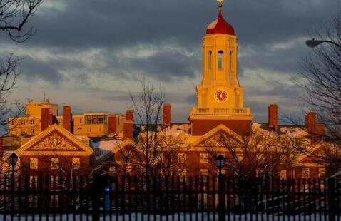 Harvard campus at sunset