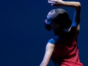 Washington University Dance Collective: 'Supper'