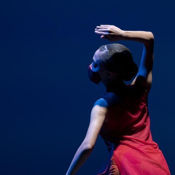Washington University Dance Collective: 'Supper'