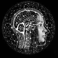 Artificial Intelligence in the Workplace: Fantastic Skills and How You Fit In