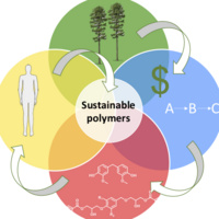 Sustainable polymer cycle: depiction of trees, person, dollar sign, polymer chains, and equations