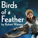 Birds of a Feather Free On Demand Play