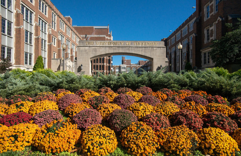A photo of the arch next to the Hyman Building with flowers in the foreground.