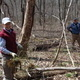 Take Back the Woods: Battling Invasive Species