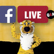 Facebook Live with Early Childhood Education