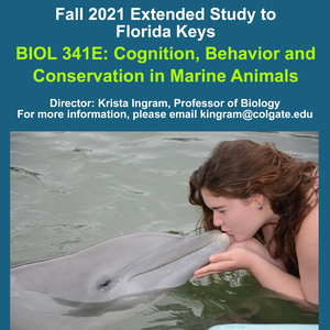Fall 2021 Florida Keys Extended Study Information Session