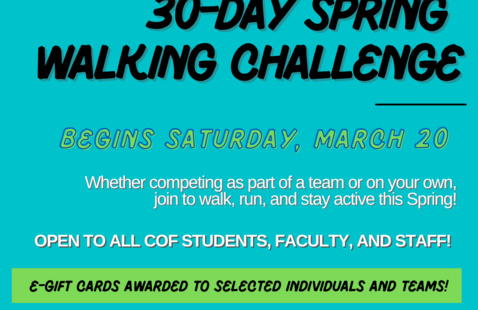 Walking Challenge Flyer