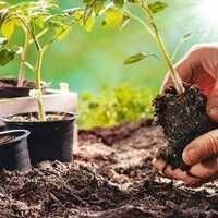 Earth Day Gardening Kit