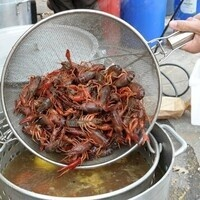 Crawfish Boil 4pm-4:15pm CARRY-OUT