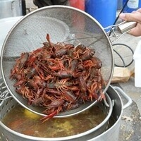 Crawfish Boil 4:40pm-4:55pm CARRY-OUT