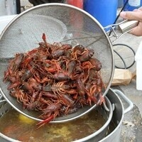 Crawfish Boil 5pm-5:45pm TABLE RESERVATION