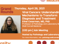 Diversity Week - Viral Cancers: Understanding Mechanisms to Transform Diagnosis and Treatment