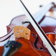 Musical Storytelling with the Mount Vernon Virtuosi Chamber Orchestra